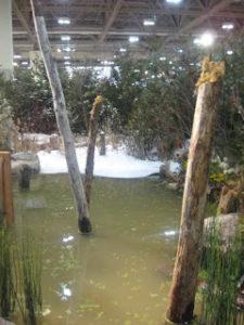 wetland-garden