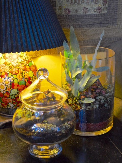 TorontoGardens-Terrariums